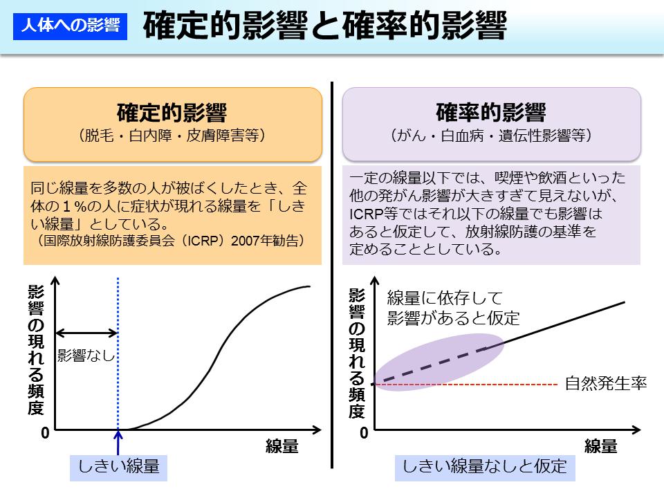環境省_確定的影響と確率的影響
