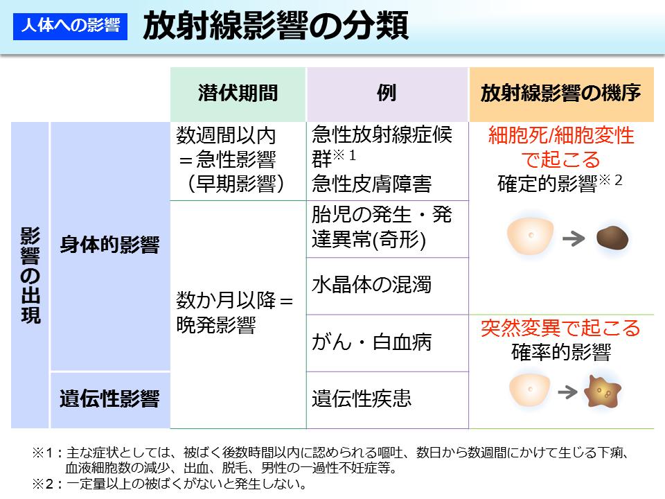 環境省_放射線影響の分類