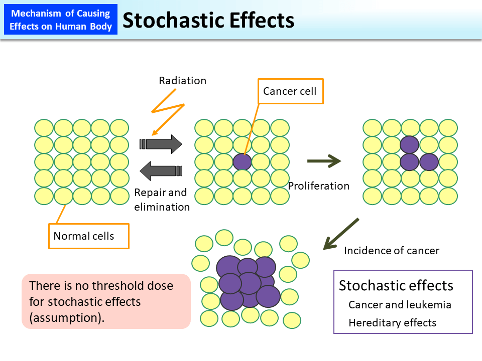 Stochastic Effects - Epidemic Modeling 103 Adding ...