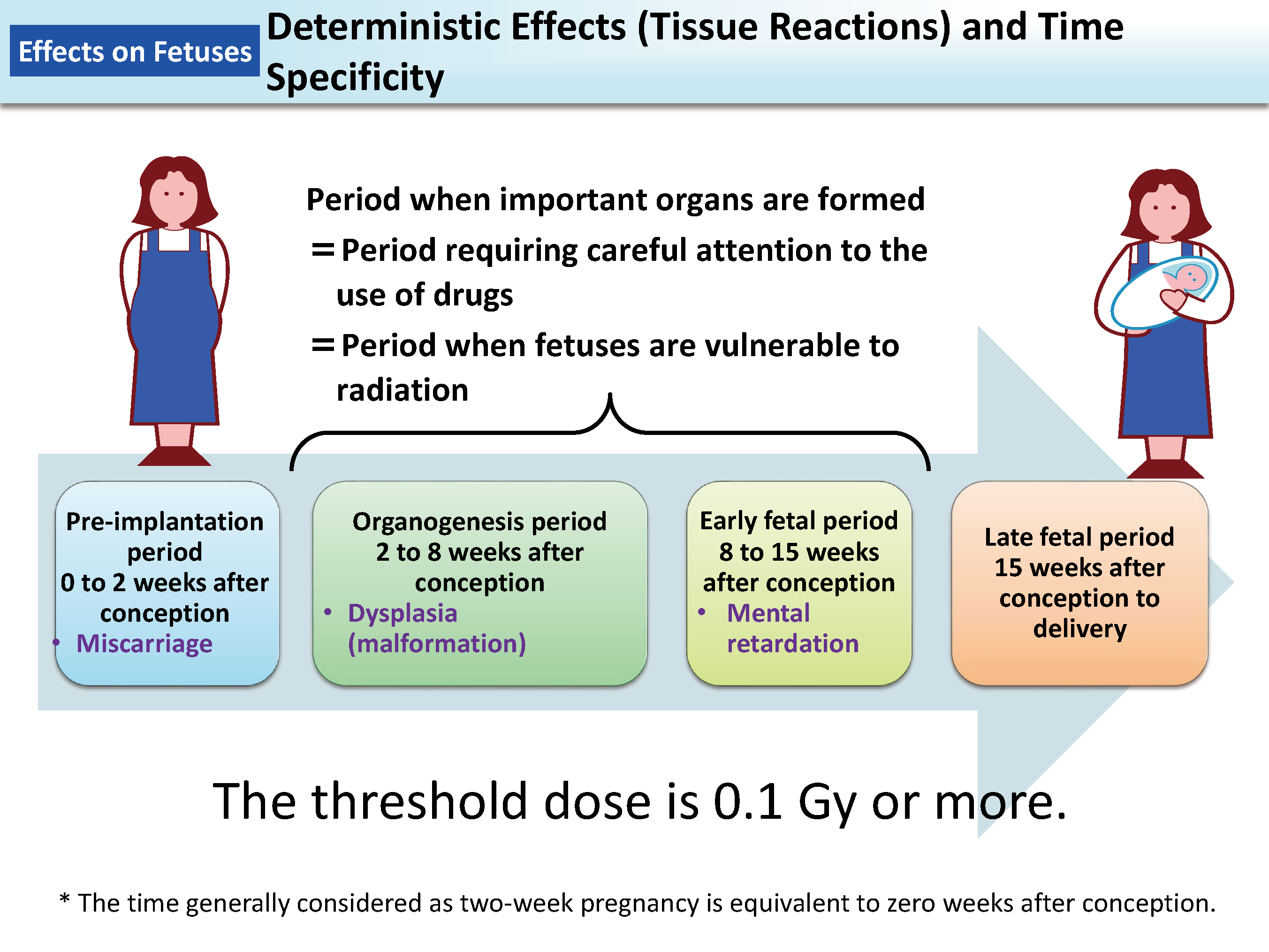Deterministic Effects and Time Specificity [MOE]