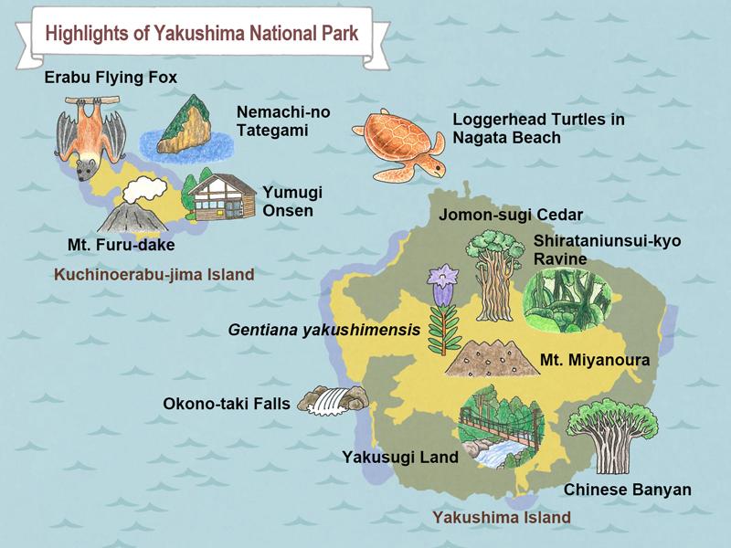 Yakushima Island National ParkGuide Of Highlights MOE - Japan map yakushima