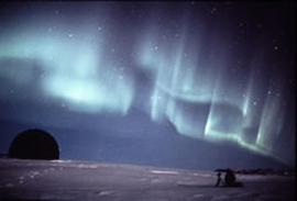 南極キッズ