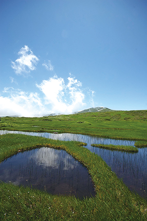 photo of Ponds of Midagahara at Mt.Gassan
