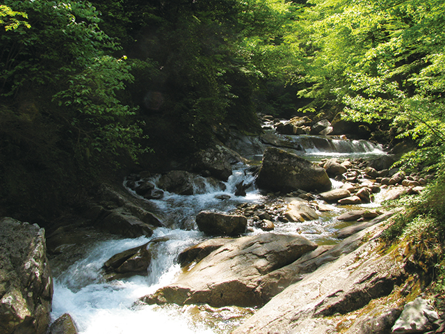 photo of Nishizawa Gorge