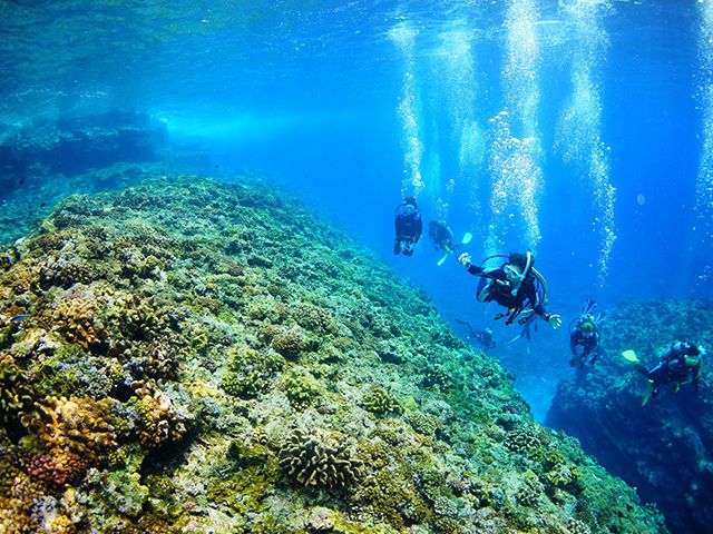 photo of Keramashoto National Park: Diving Enthusiasts