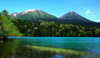 公園 と は 国立 国立公園のワニ 世界最速のチーターを水中に引きずりこみ食べる