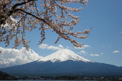 富士 箱根 伊豆 国立 公園