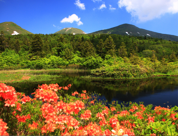 The famed peaks of Hakkoda peaks, marshlands created by springs, and deep forests