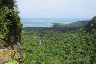 photo 9 of Iriomote-Ishigaki National Park