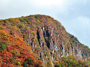 photo of Colored Leaves on Byobuiwa Cliff