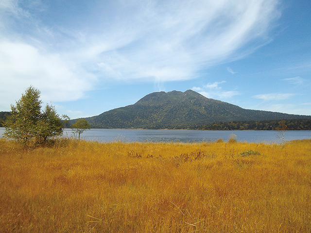 photo of Autumnal-tinted grass on the shore of Lake Ozenuma and Mt. Hiuchigatake (October)