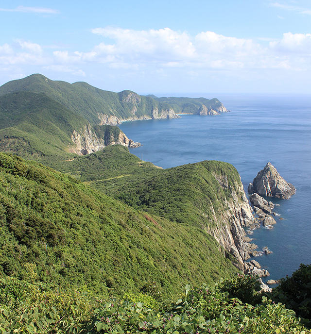photo of Osezaki Cliffs