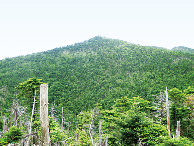 photo of Mt. Misen and Mt. Hakkyogatake