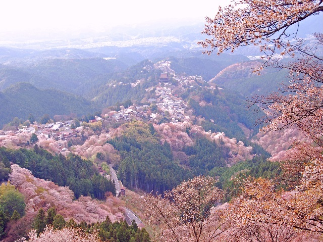 photo of Mt. Yoshino