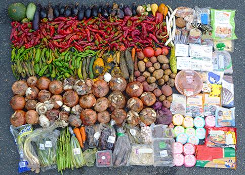 食品ロス発生量の調査への支援イメージ